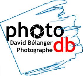 David Bélanger